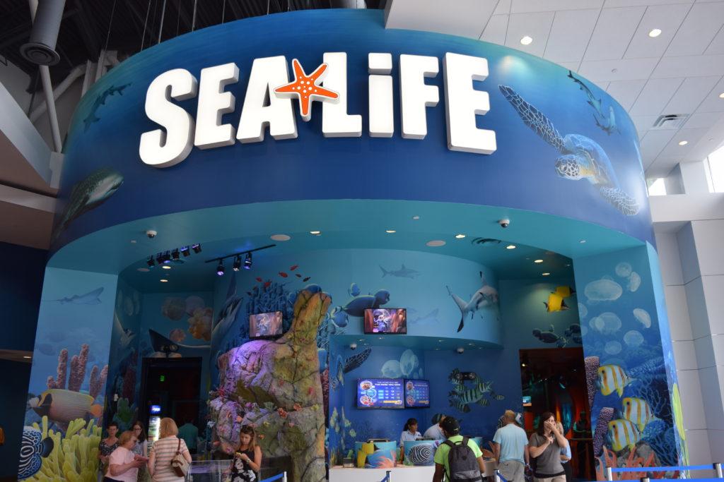 SeaLife Aquarium, o aquário do complexo