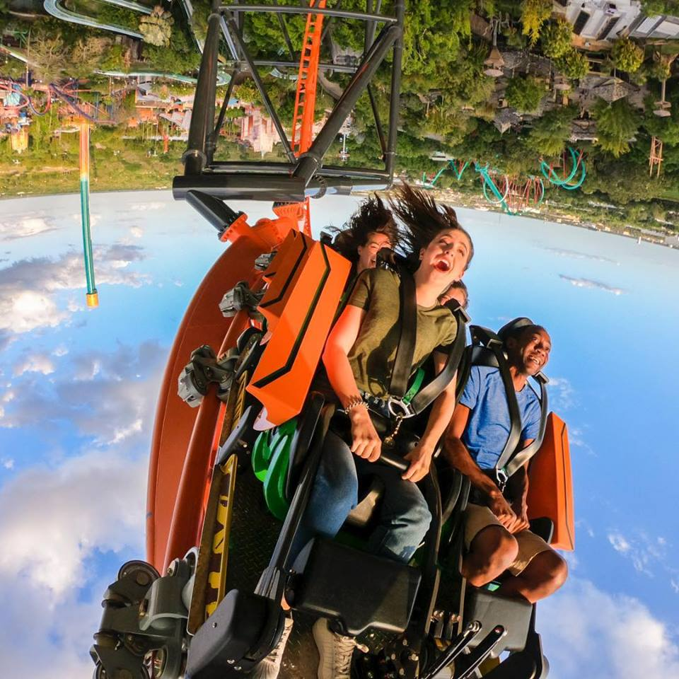 Tigris montanha-russa Busch Gardens