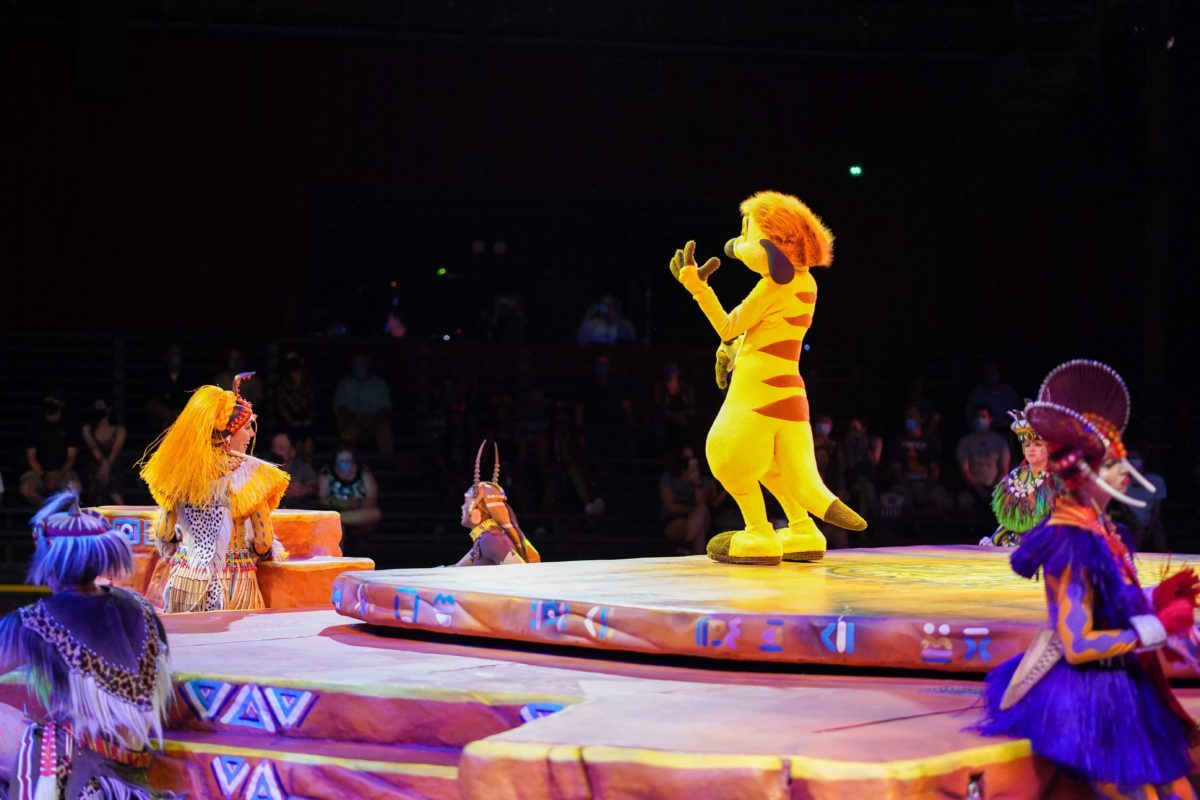 show rei leão animal kingdom 15
