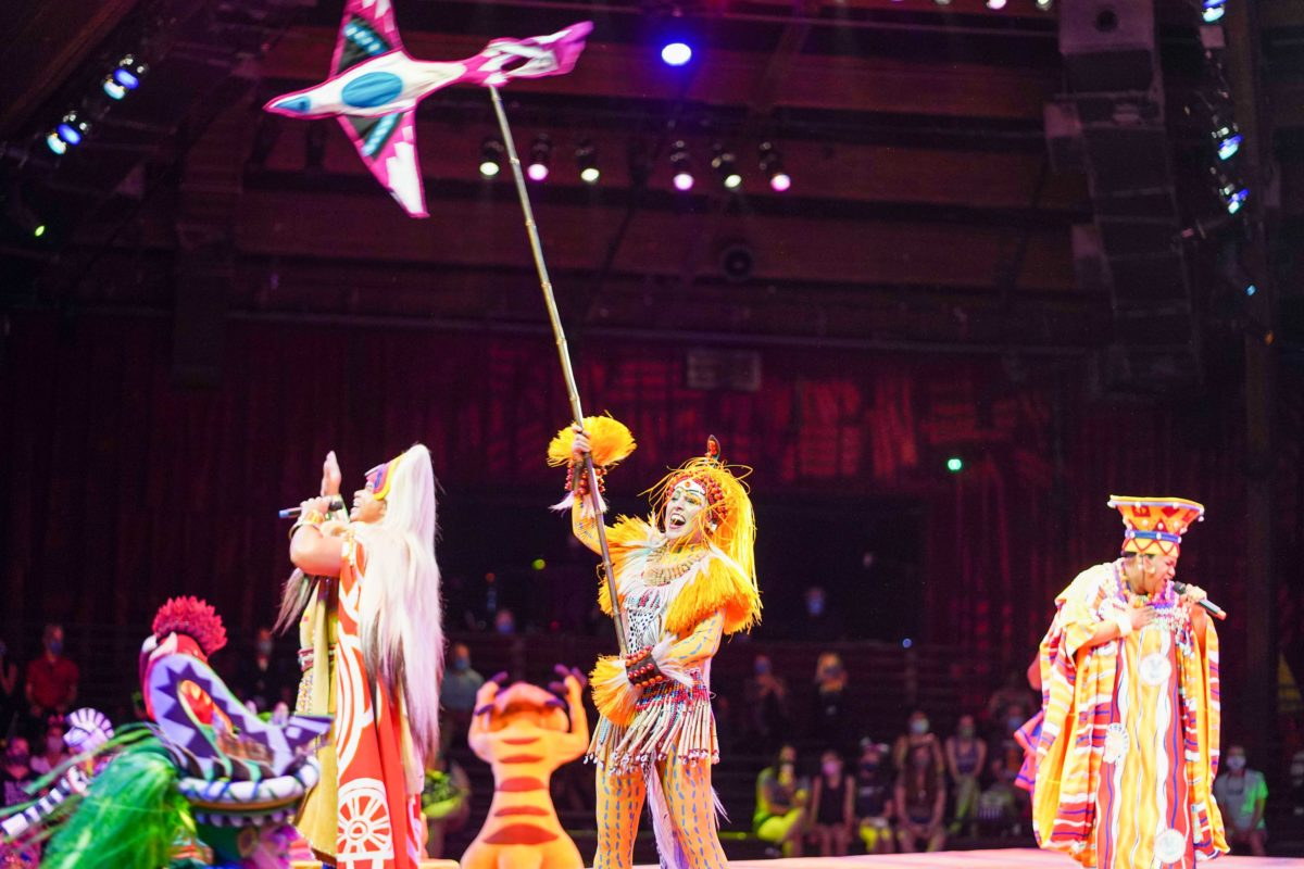 show rei leão animal kingdom 18