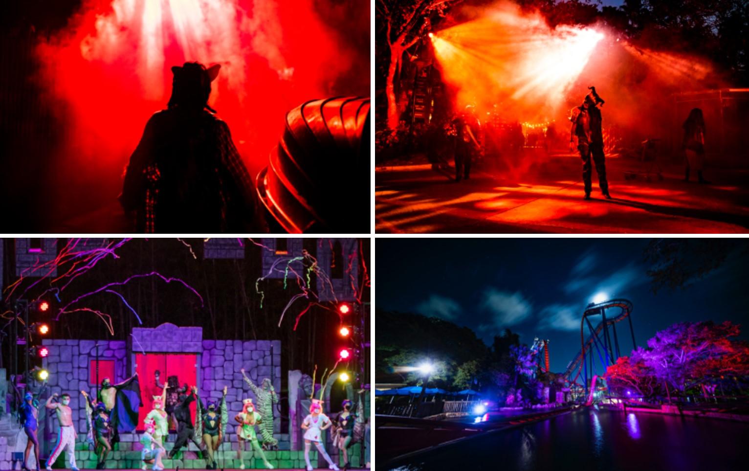 Halloween-Sea World-Busch Gardens-2021-05