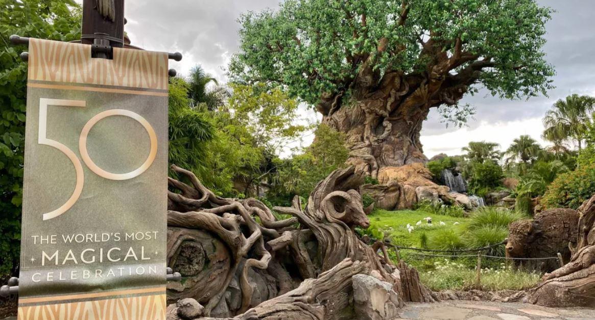 50 anos da Disney 24